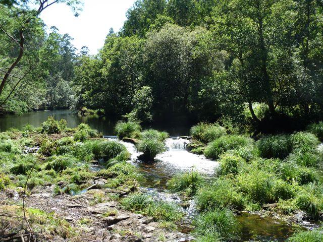 stroomversnellingen in het riviertje zorgen voor een gezellig kabbelend geluid