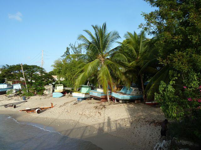 Een sfeervol plaatje, palmen en gekleurde bootjes, daar gaan we er nog vele van zien