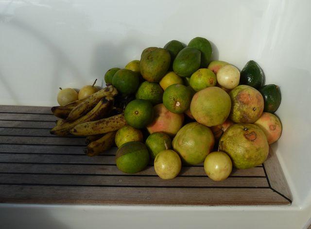 Moet je zien, wat een berg fruit. Sindsdien elke dag vers geperst sap of een smoothie