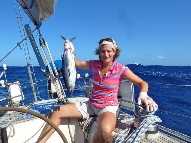 deze lijkt er meer op, een skipjack-tuna, wordt ook bonito genoemd