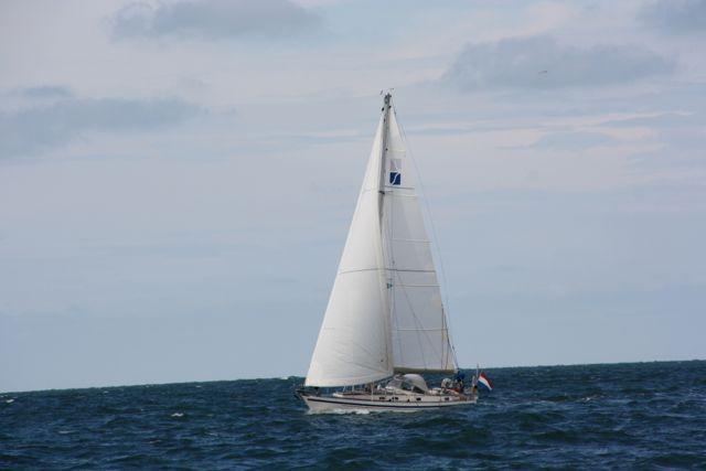 Deesse op zee
