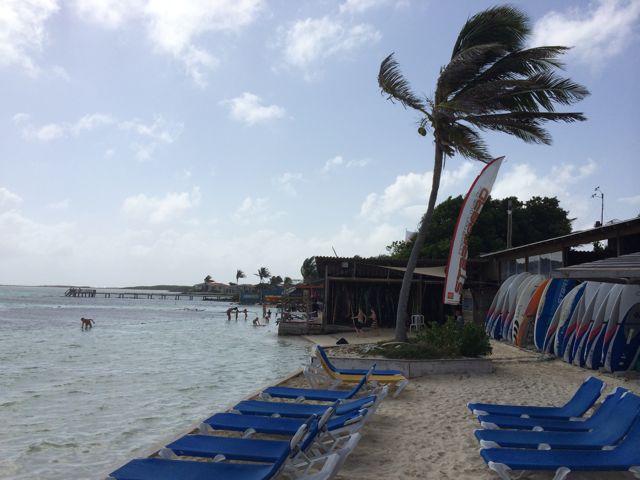 vanuit onze strandstoel mooi uitzicht over de baai vol surfers