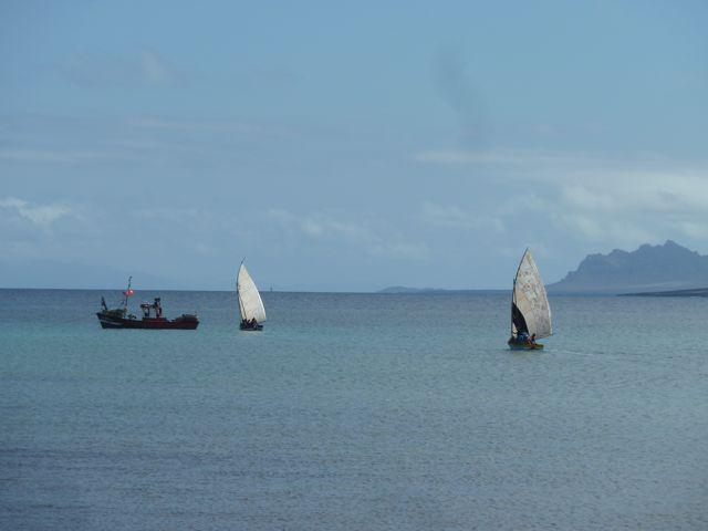 Zeilende traditionele vissersschepen gaan op weg naar Santa Luzia in de hoop op goede vangst. Ze zullen pas over een paar dagen terugkeren.