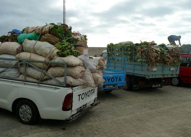 Als we met de ferry op Sao Antao aankomen, staan de auto's volgeladen met landbouwopbrengst klaar om verscheept te worden naar Sao Vicente, waar het minder vruchtbaar is.