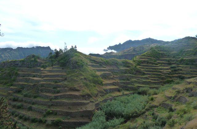 Terrasbouw waar je ook kijkt, en hoe steil de hellingen ook zijn.