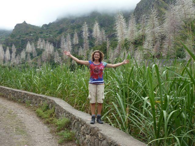 temidden van suikerrietplantages