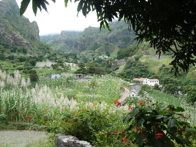 Uitzicht over de vruchtbare vallei waar vanalles wordt verbouwd; suikerriet, papaya, koriander, bananen, noem maar op.