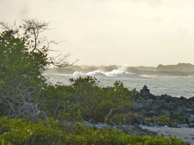 de woeste golven slaan kapot op het rif