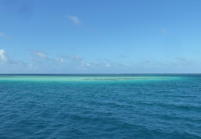 blauw blauw en blauw, isla Barlevento nadert