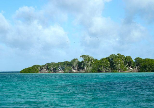 punt van het eiland
