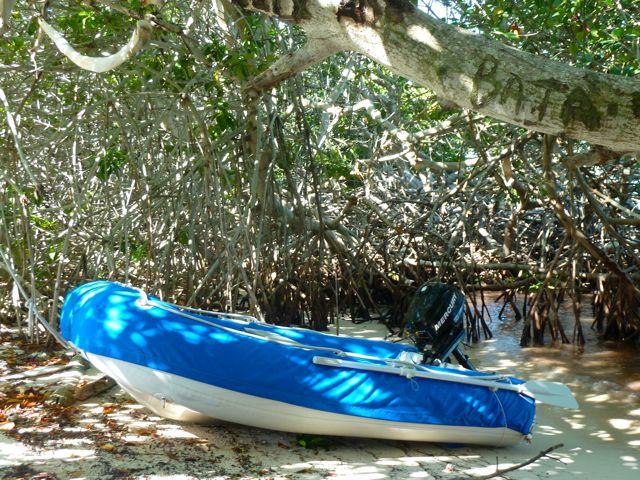 landing met de dinghy in het mangrovewoud