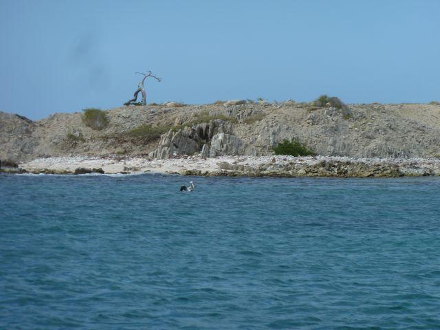Eerst een tussenstop bij eiland La Blanquilla