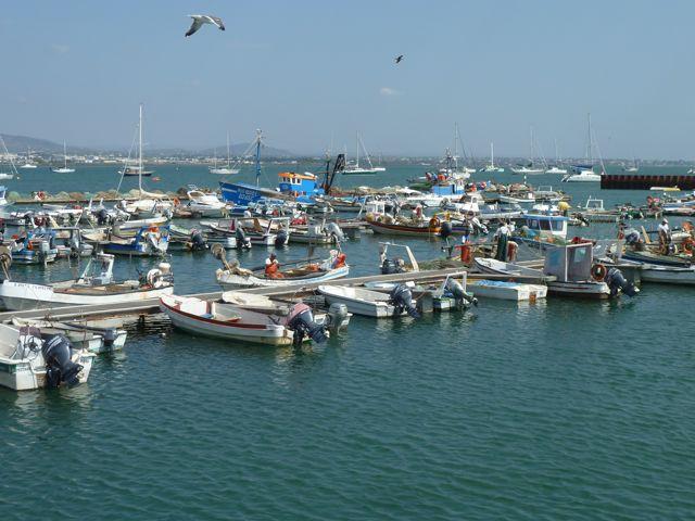 De sfeervolle vissershaven van het eiland Culatra