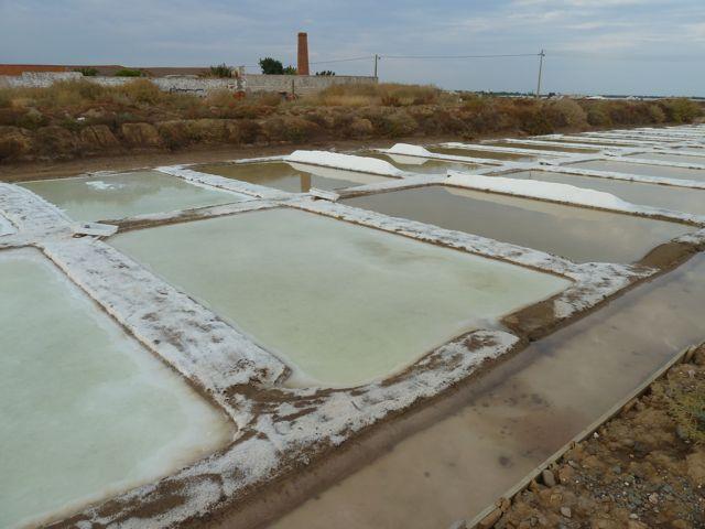 In Tavira kijken we onze ogen uit bij de zoutbekkens