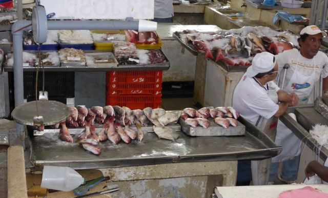 En daar is ie dan, de grote overdekte vismarkt