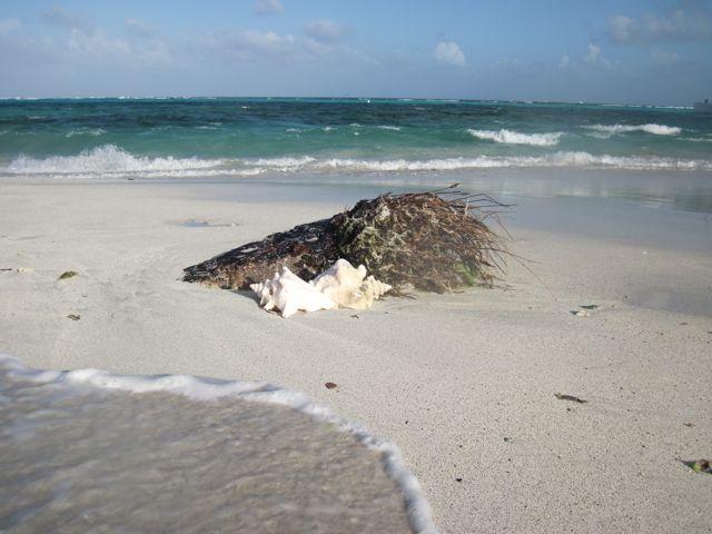 Zandplaat net achter het rif
