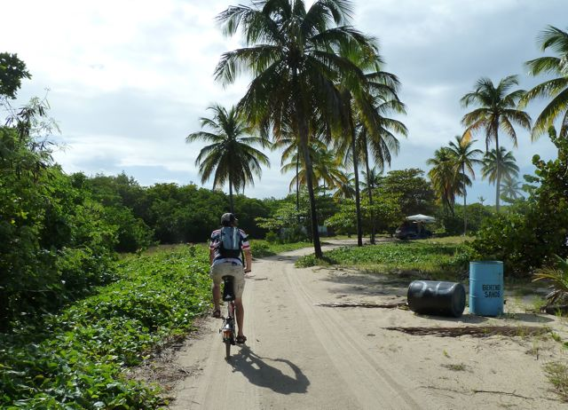 tropisch plaatje en heerlijk om te fietsen