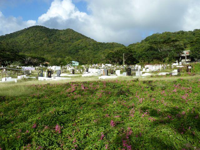 Deze begraafplaats lag er zo mooi bij, uitzicht over de zee en overwoekerd door bloemetjes