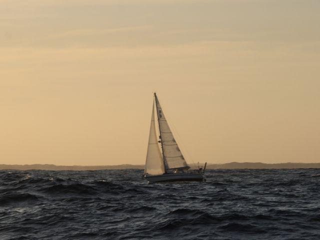 Mosambik 332